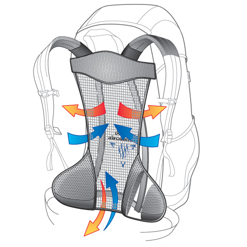 Système de dos Deuter Aircomfort